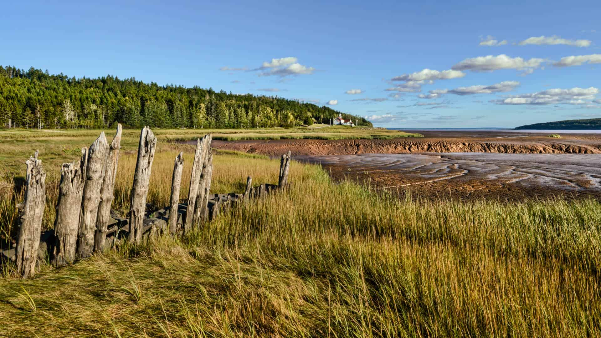 Petitcodiac River at Beaumont -5077