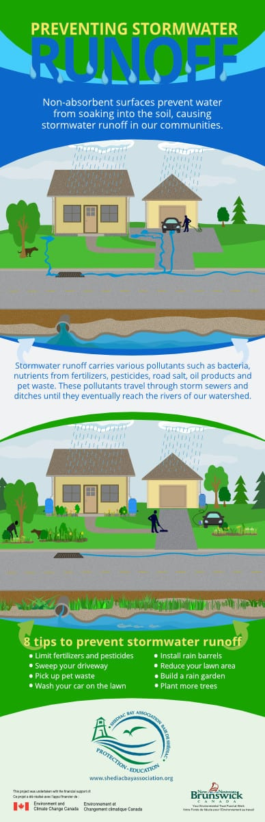Stormwater infographic - Research, co-writing, design and illustration